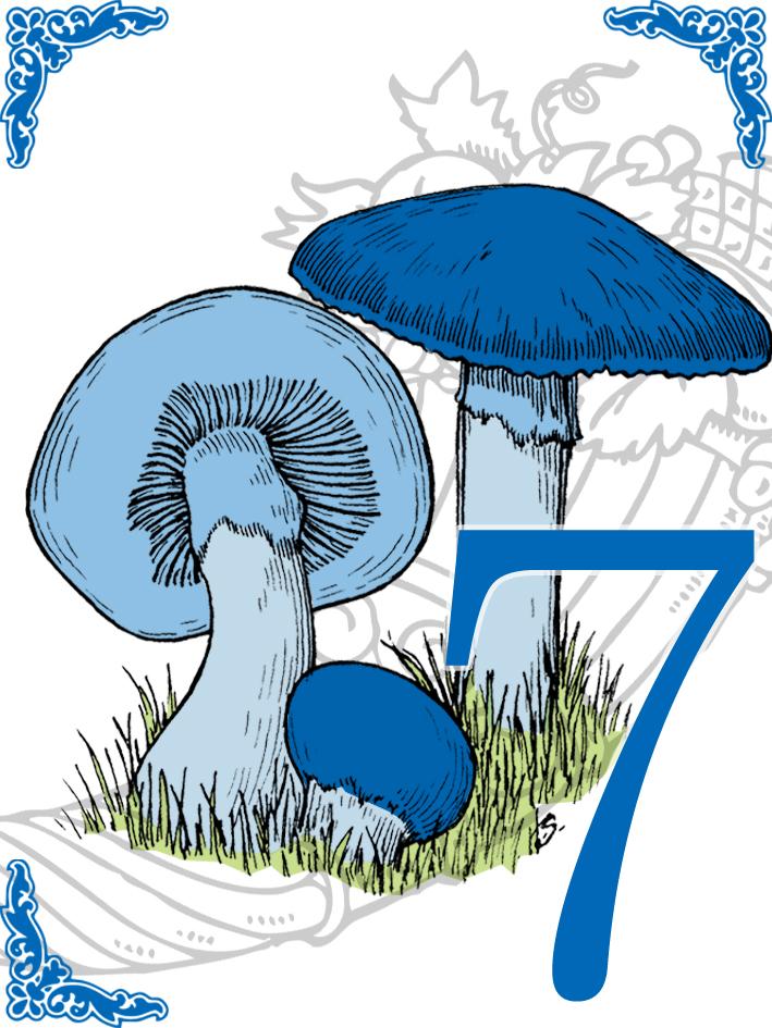 T_Mushroom