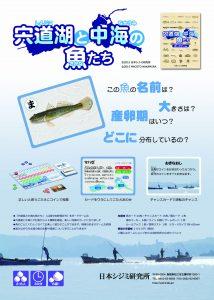 宍道湖と中海の魚たち