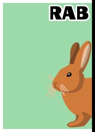 アタマカード ウサギ