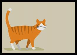 ネコ:トラ