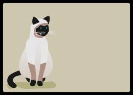 ネコ:シャム