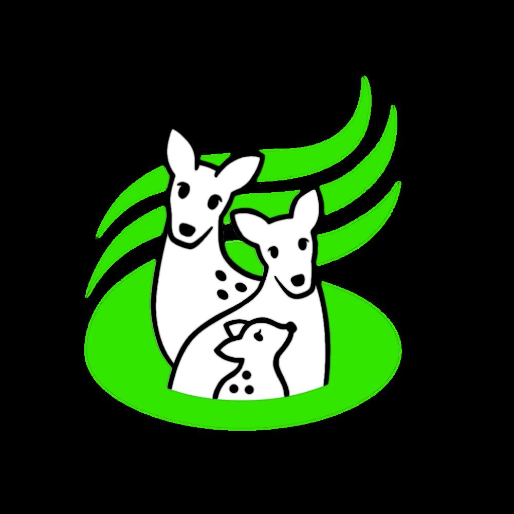 鹿教湯温泉画像