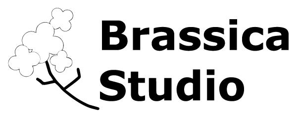 ブラシカスタジオ画像