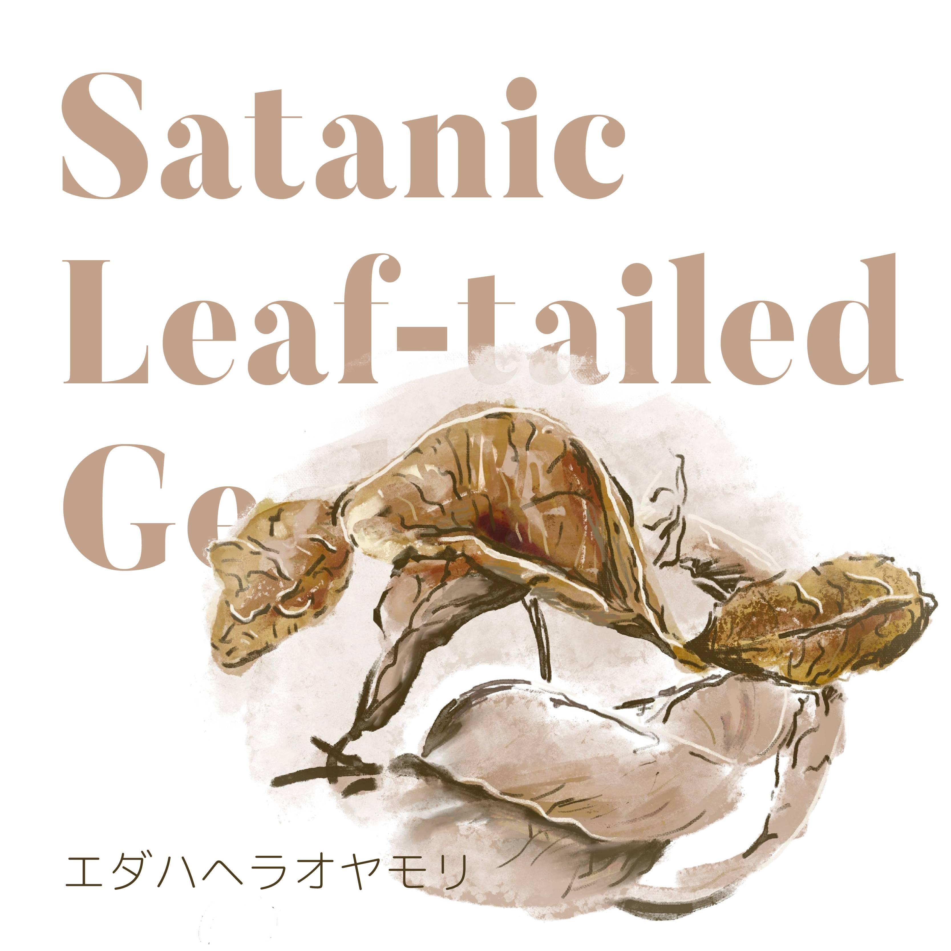 https://image.gamemarket.jp/20210309_202741_gecko-01-01.jpg