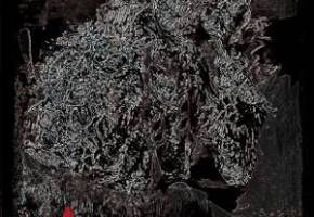 [【クトゥルフ系人狼】人門]
