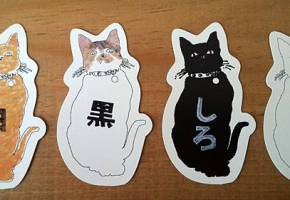 [CAN de CATS (カン・デ・キャッツ) [新作]]