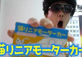 [猫リニアモーターカー【O-17】]