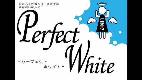 [Perfect White]