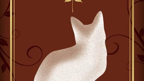 [CAT CATch]