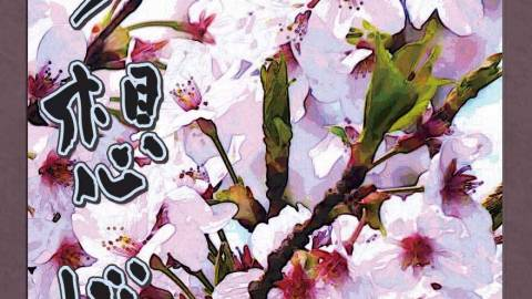 [夢想桜]