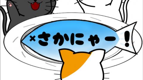 [さかにゃー!]